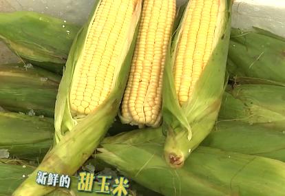 福建省援助湖北省600吨蔬菜产品